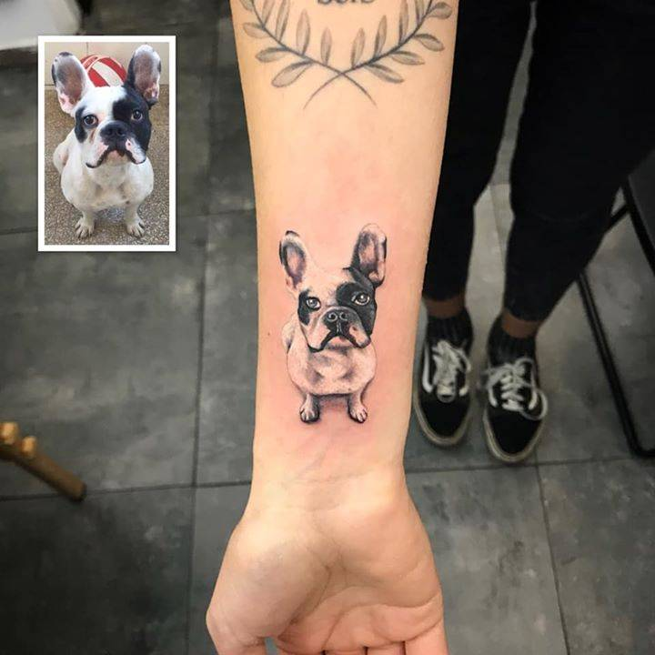 ? Pets Club, French Bulldog. ?