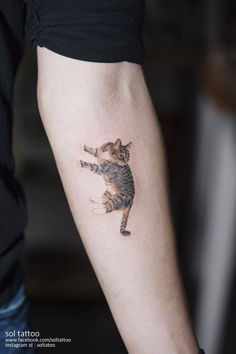 Cat tattoo on the left inner forearm for Tatoo gatos