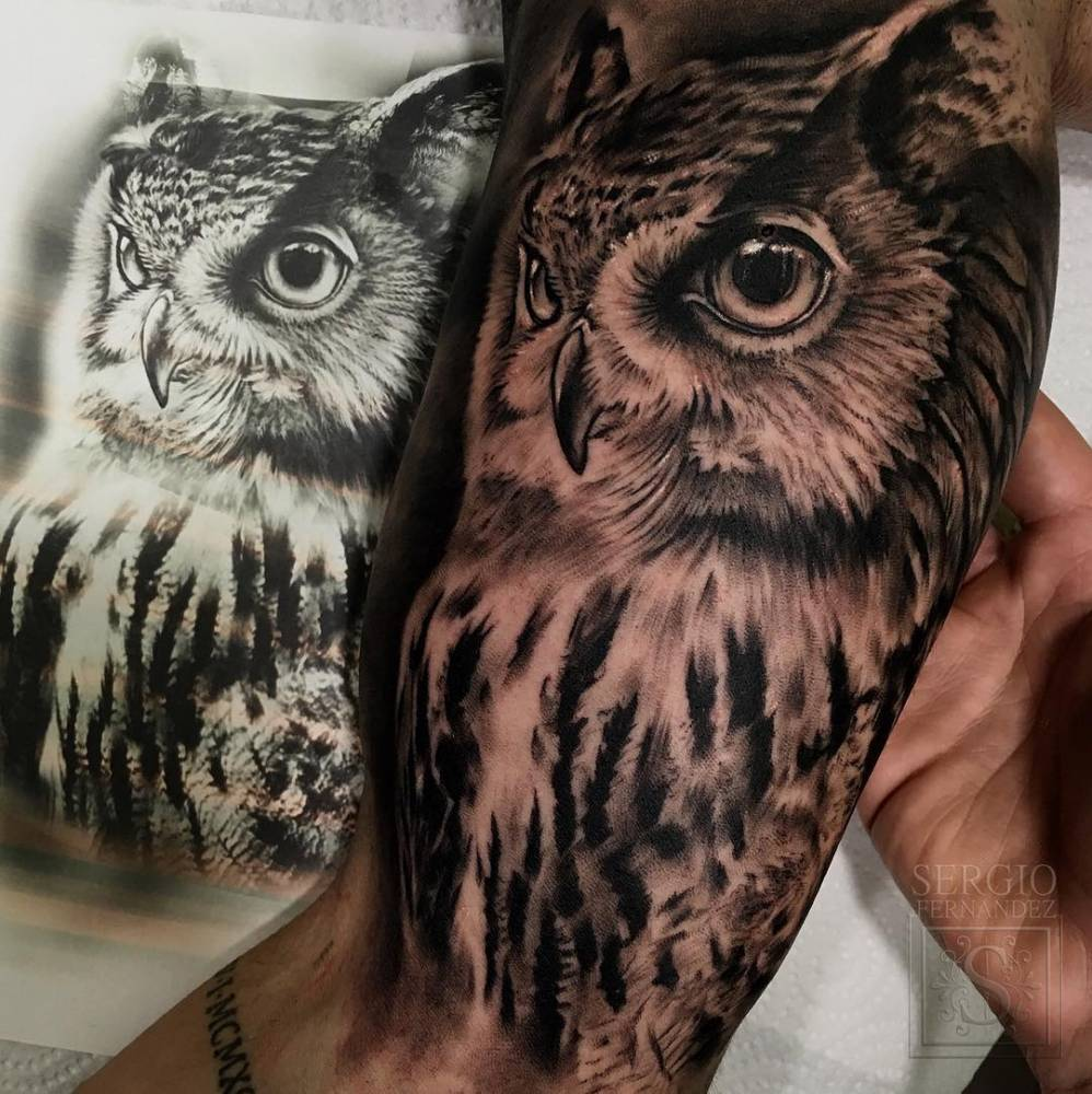Black And Grey Owl On The Right Inner Arm