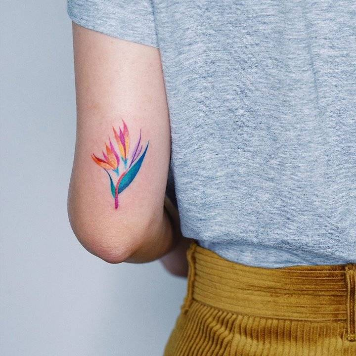 Illustrative bird of paradise tattoo on the back of the