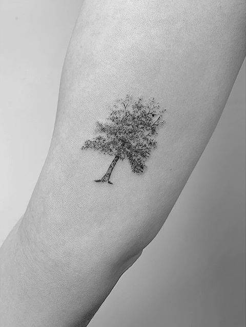 Apple tree tattoo on the inner arm.