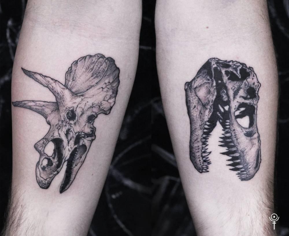 876c52282 Triceratops and T-Rex skulls.