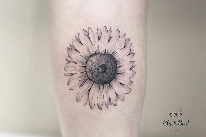 Sunflower Line Drawing : Line sunflower tattoo on the calf.