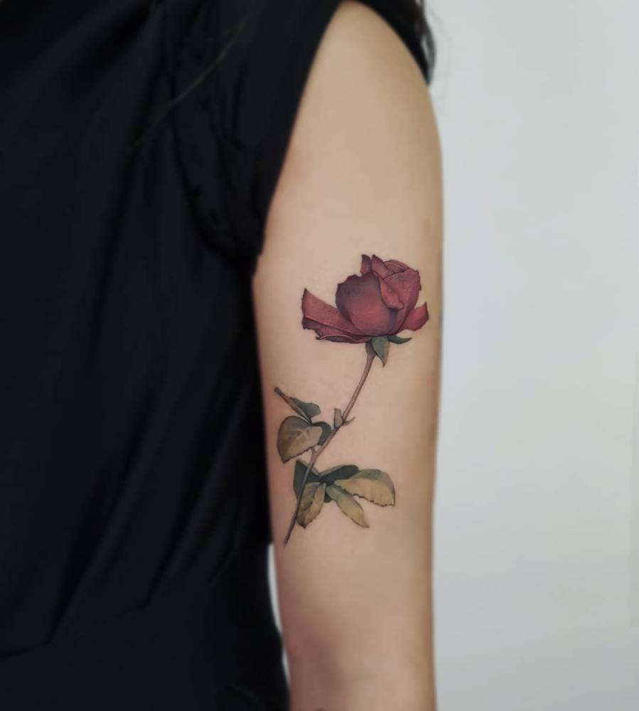 Red rose tattoo on the upper arm.