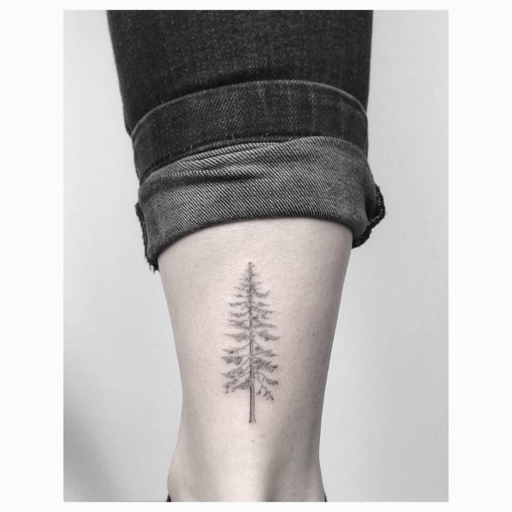 line pine tree tattoo on the right Achilles heel.