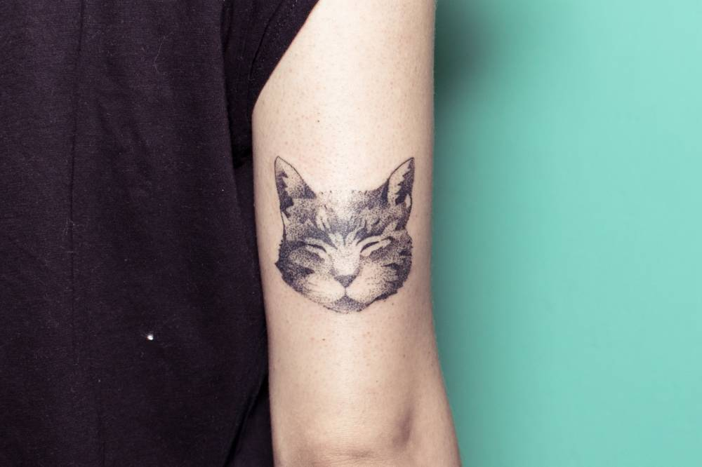 Hand poked sleepy cat portrait tattoo on the back of the right arm.