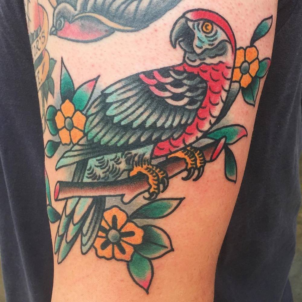 Traditional style parrot tattoo.