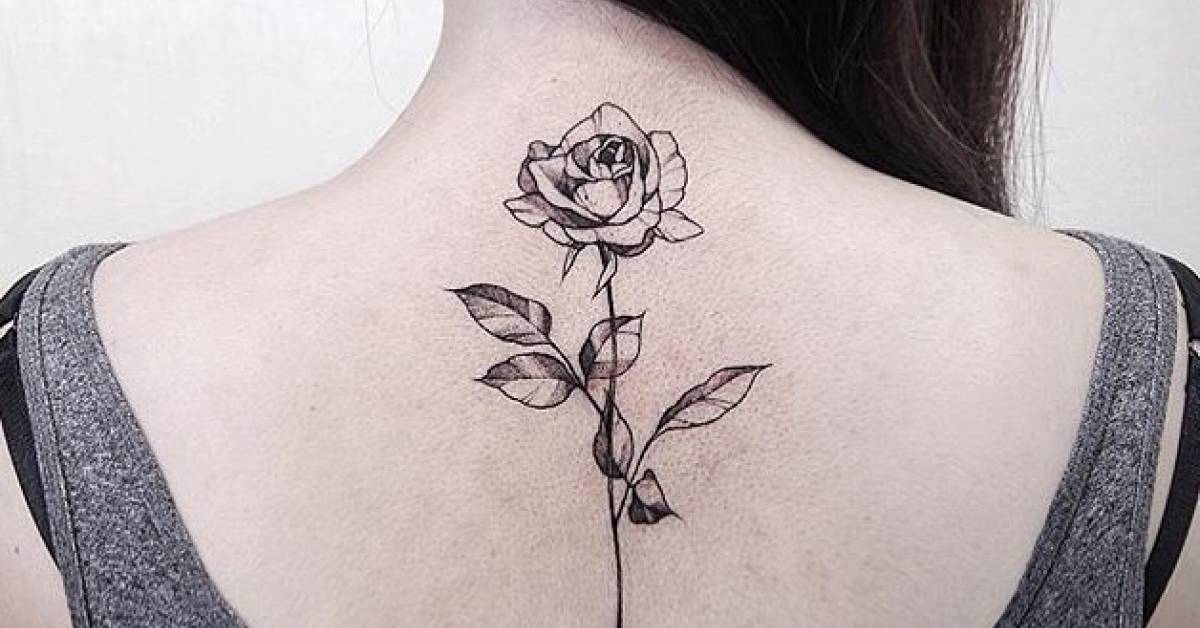 illustrative rose tattoo on the upper back. Black Bedroom Furniture Sets. Home Design Ideas