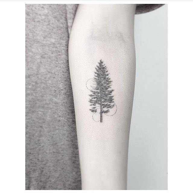 line pine tree tattoo on the left inner forearm.