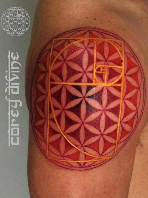 Golden ratio and flower of life tattoo on the shoulder.