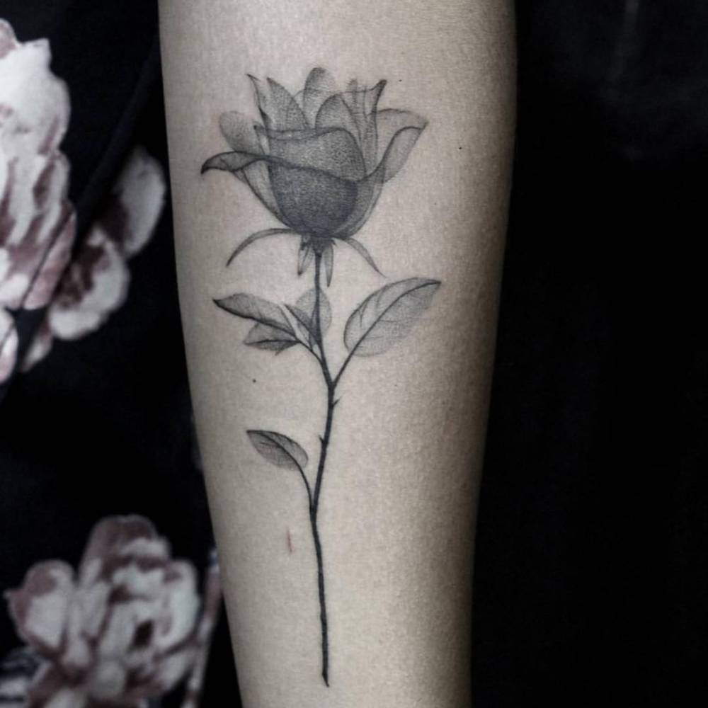 X Ray Of Rose Watercolor Amazing Tattoo For Me Yeti: Fine Line X-Ray Rose Tattoo On The Left Inner Forearm