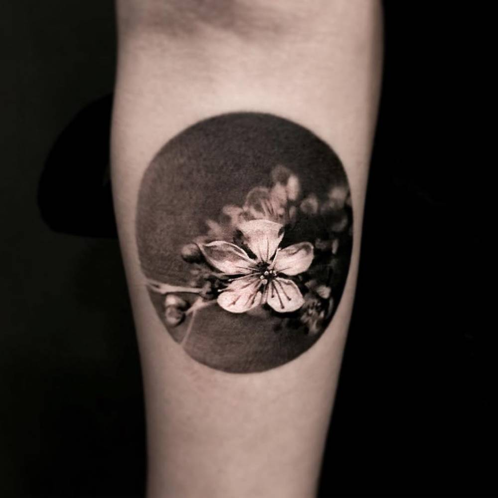 Cherry Blossom Tattoo Black And White: Black And Grey Style Cherry Blossom Circle Tattoo On