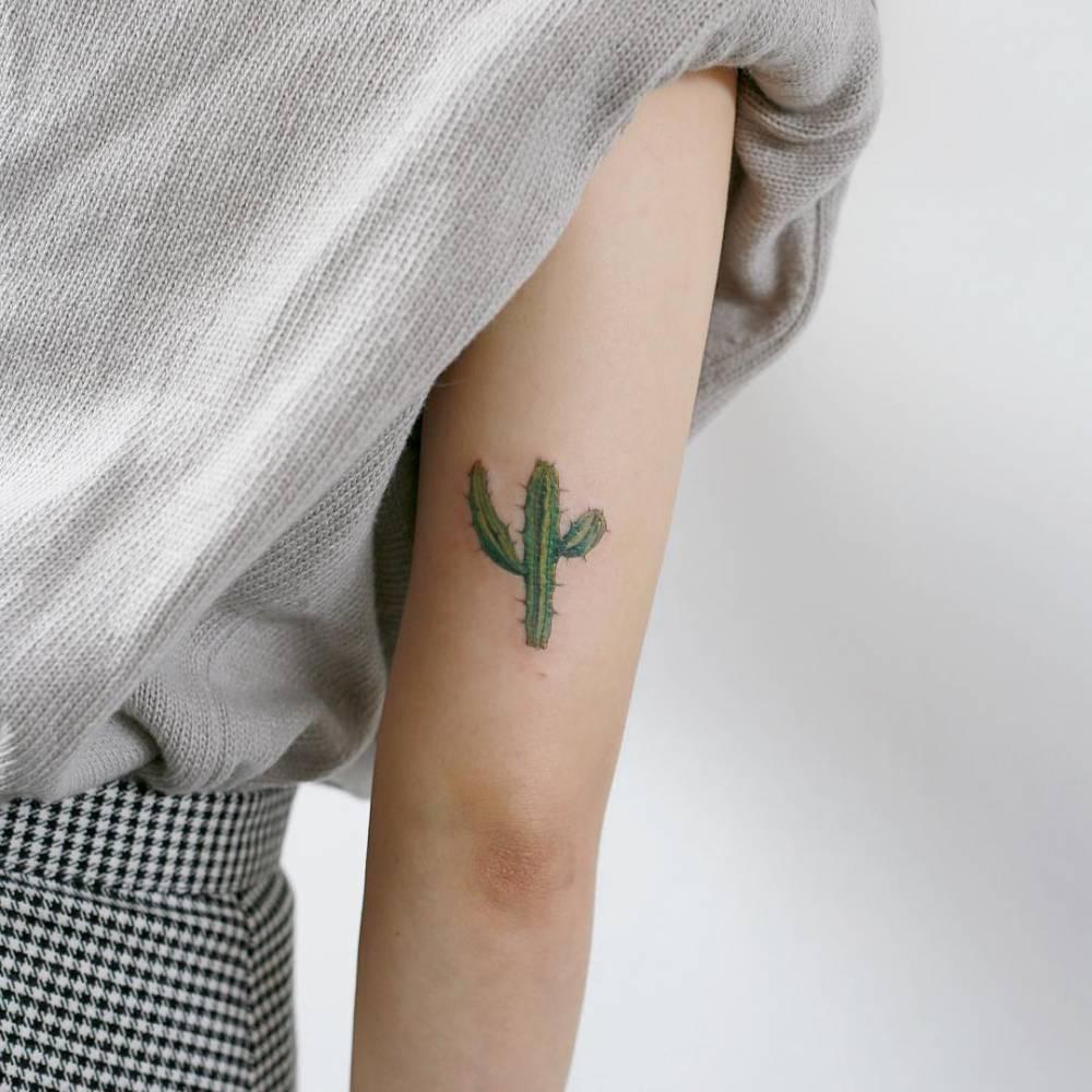 Tatuaje Cactus cactus tattoo on the back of the right arm.