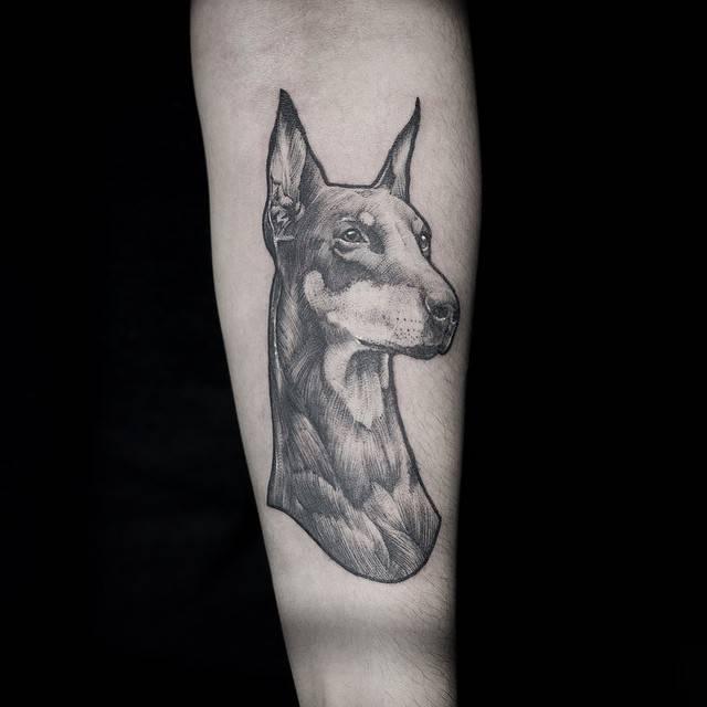 Doberman tattoo on the inner forearm.