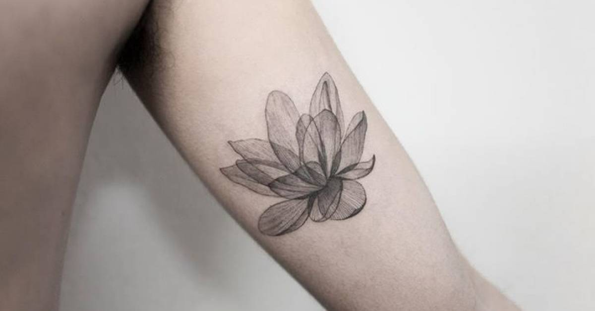 x ray lotus tattoo on the left inner arm. Black Bedroom Furniture Sets. Home Design Ideas