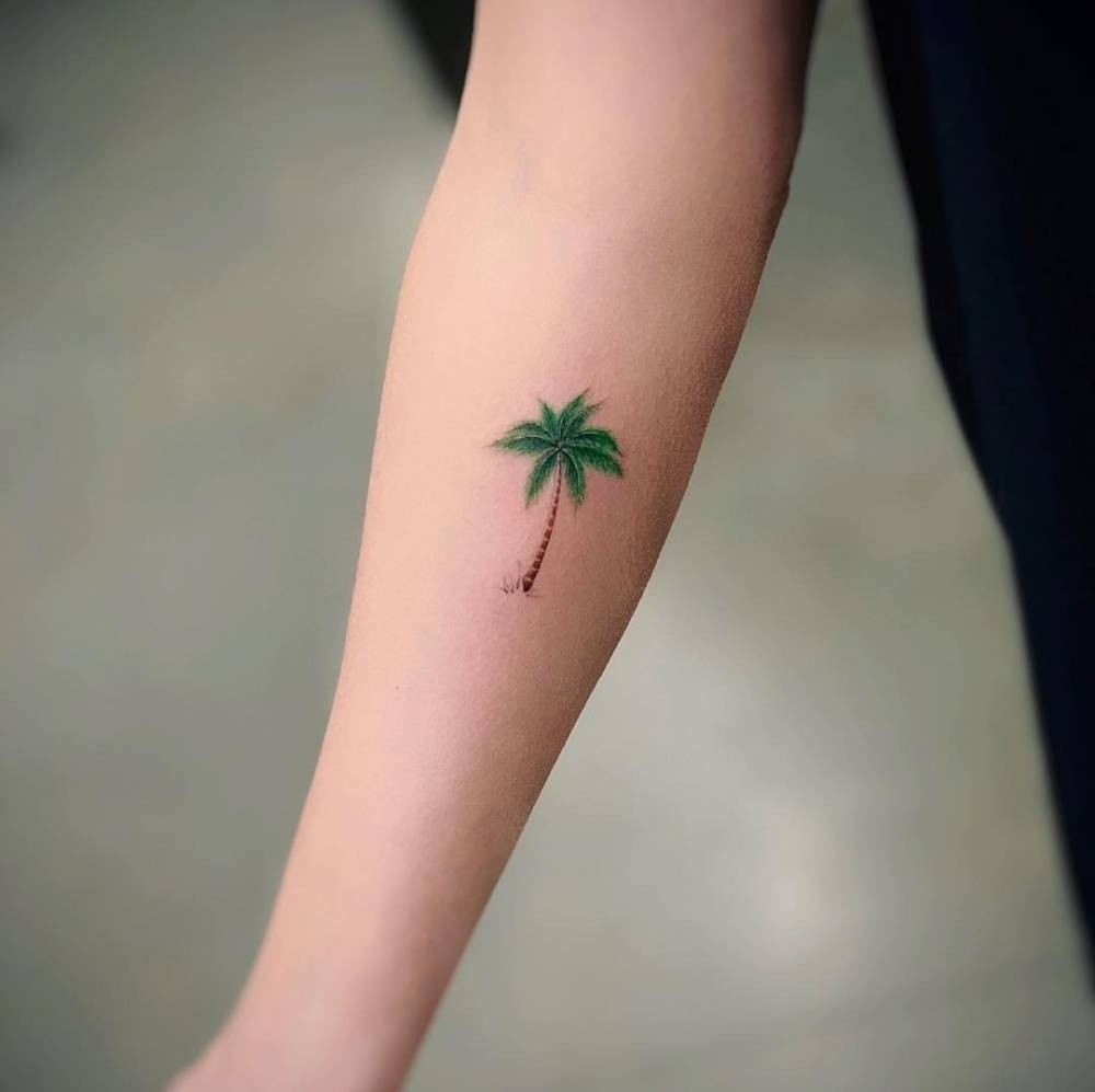 Palm tree tattoo on the inner forearm.