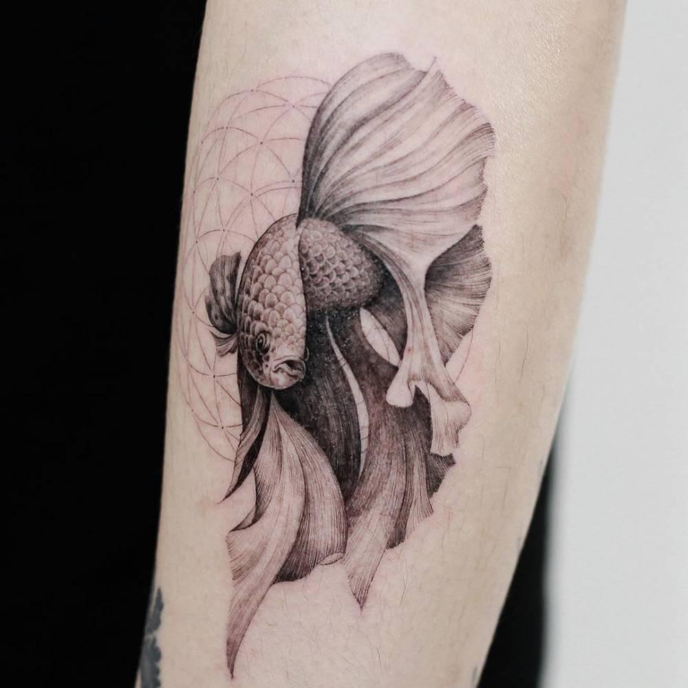 Betta Splendens Fish Tattoo