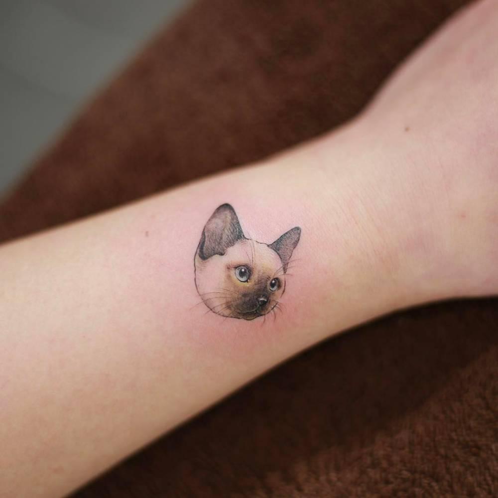 siamese cat tattoo on the wrist rh tattoofilter com siamese cat tattoo siamese cat tattoo ideas