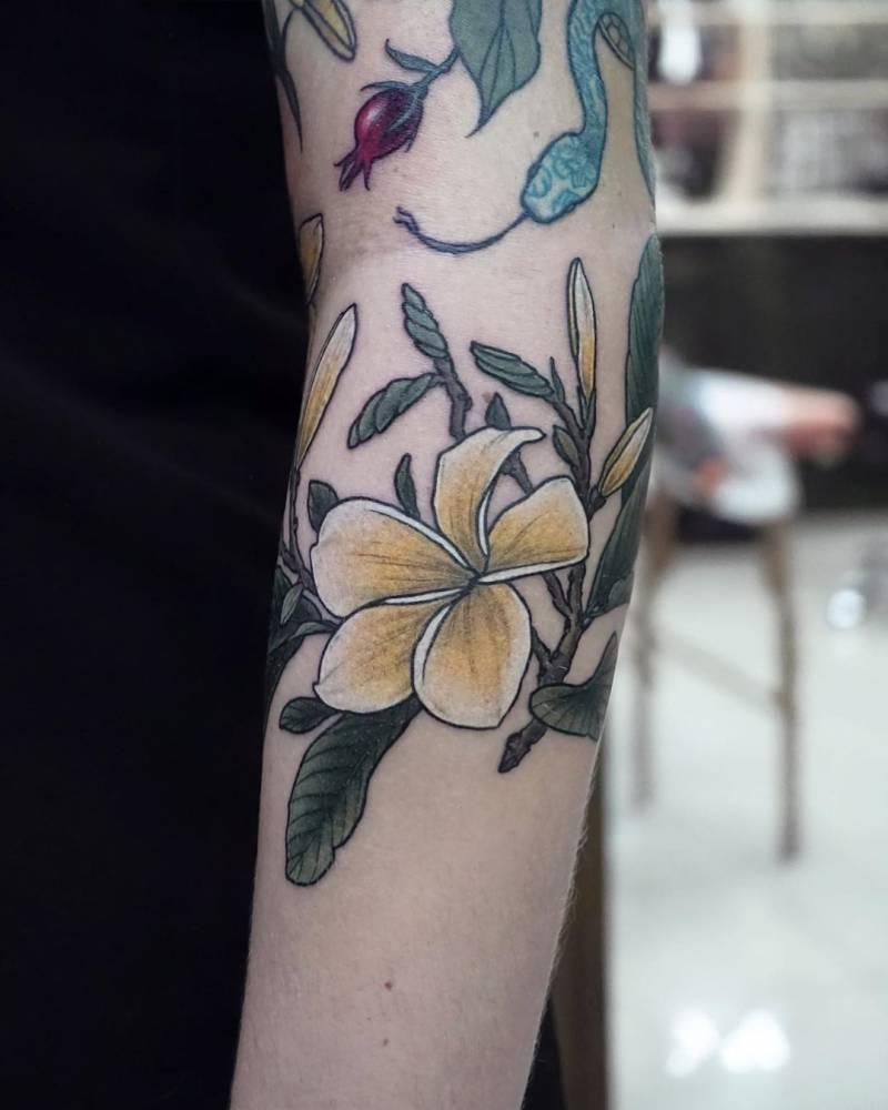 Plumeria also known as frangipani.