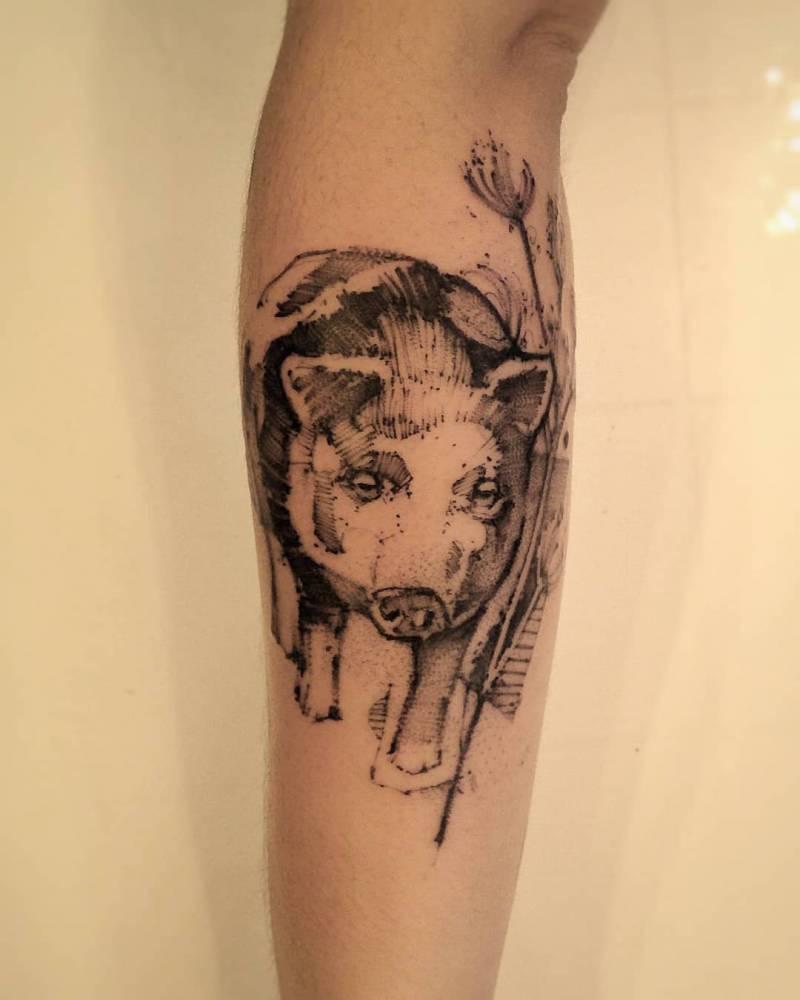 Pig pet collage ?