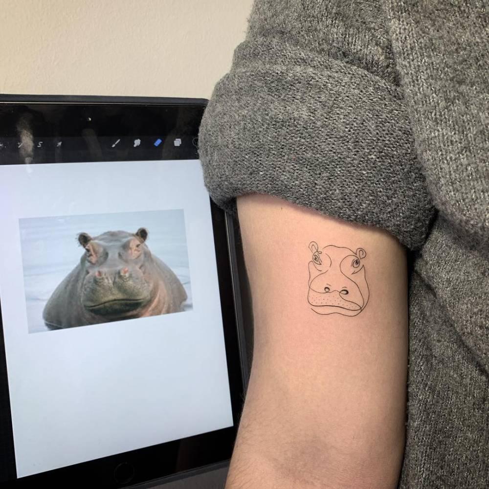 Hippo abstracto