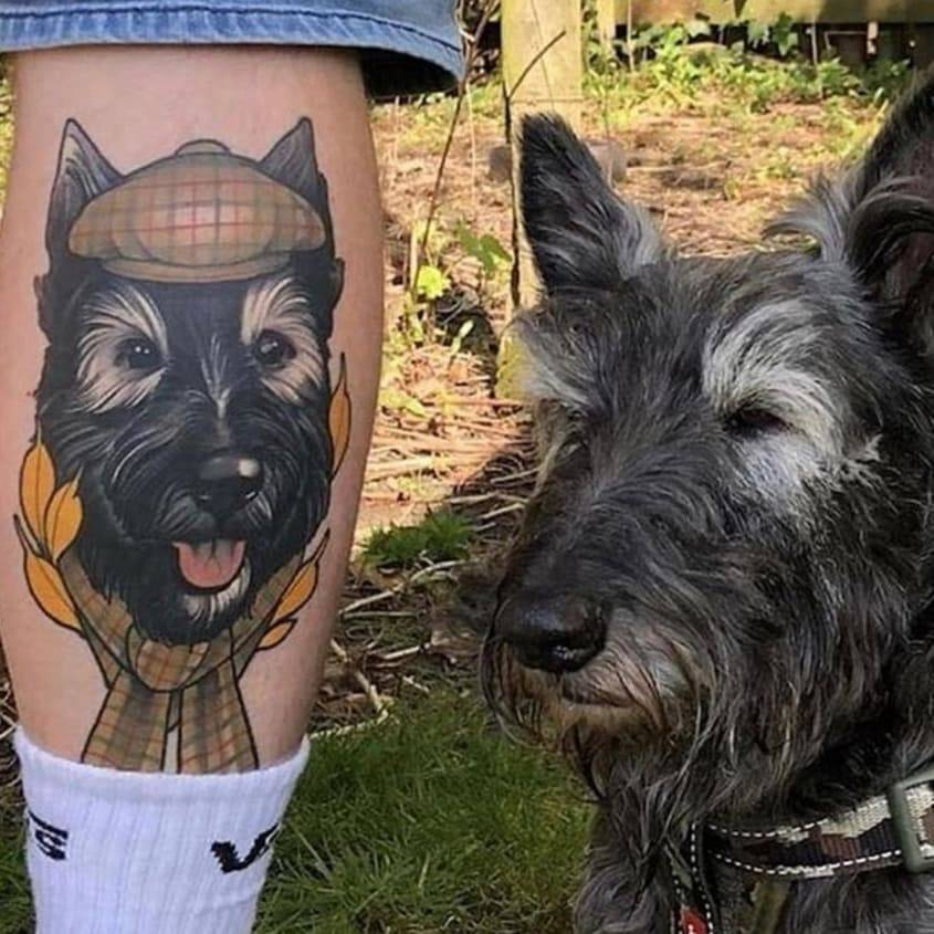 Healed dog portraits and dog.