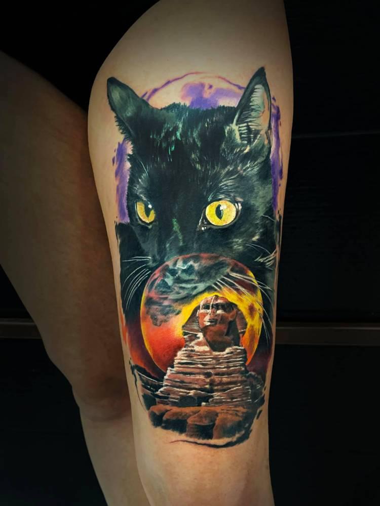 En el antiguo Egipto a los gatos negros se les consideraba animales sagrados y eran adorados por la gente. El culto a este felino surge en torno al año 2900 a.C.