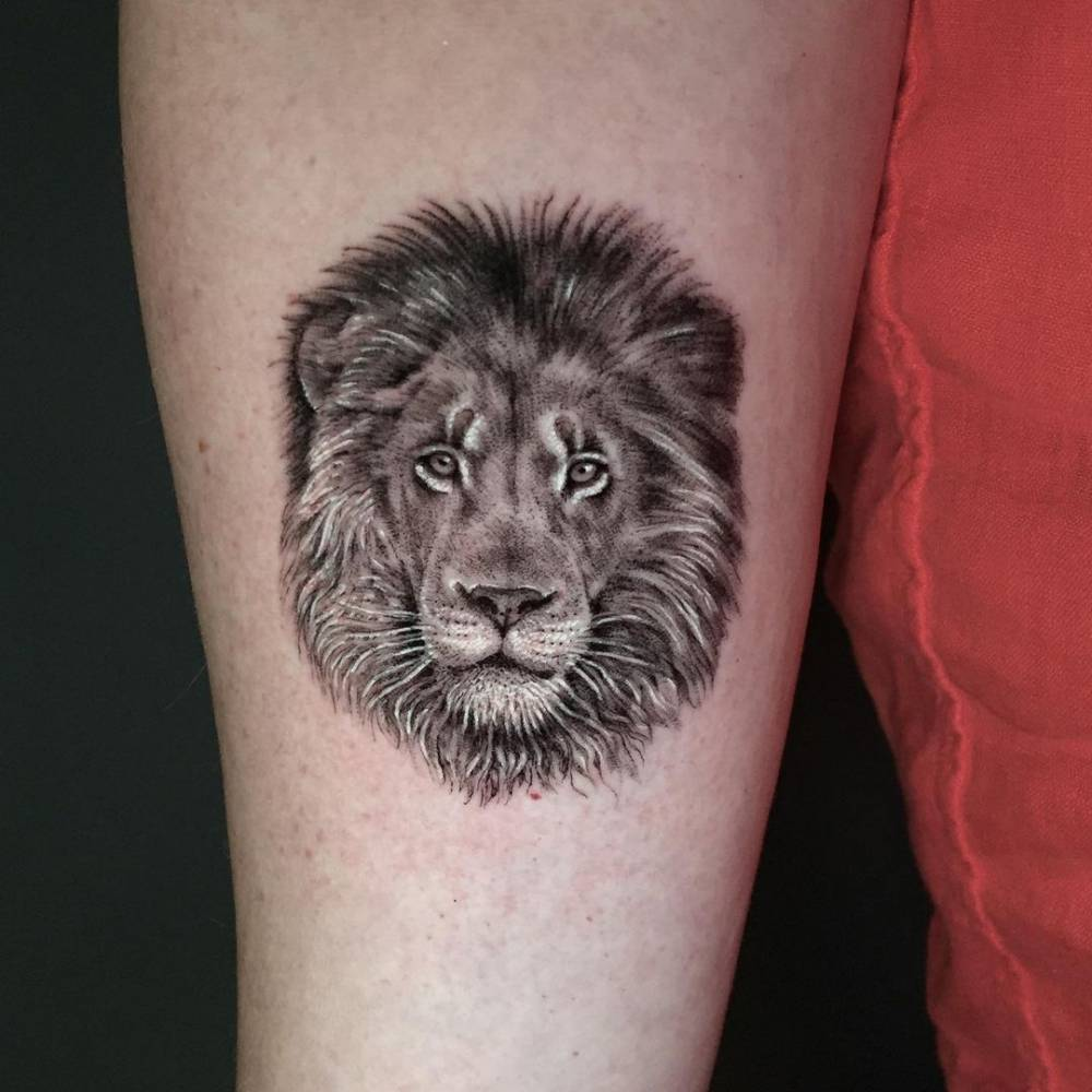 Micro-realistic lion portrait tattoo on the inner forearm.