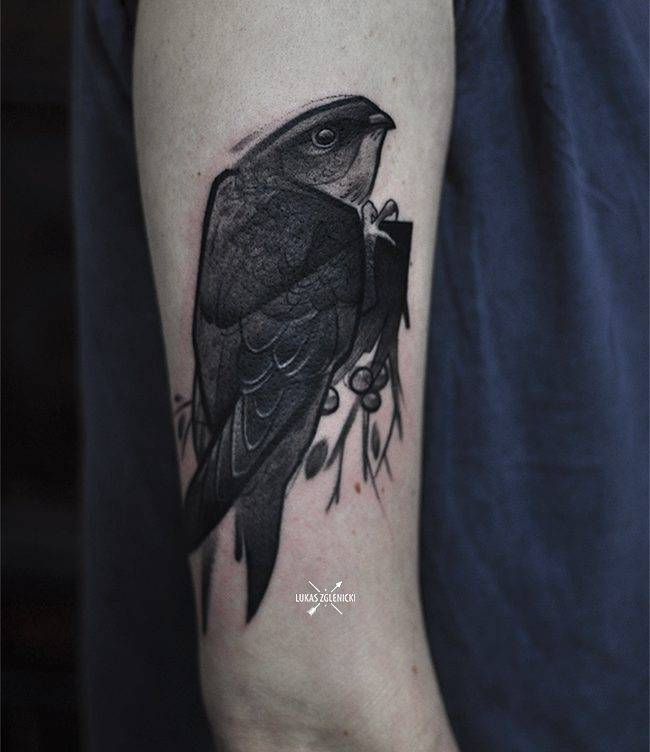 Sketch work common swift tattoo on the upper arm.