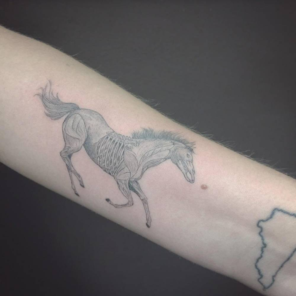 Fine Line Black And Grey Style Horse On The Left