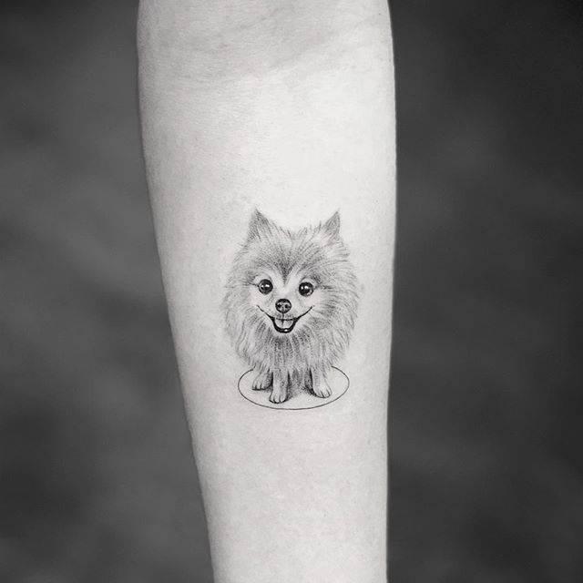 Single needle Pomeranian tattoo on the left inner forearm.