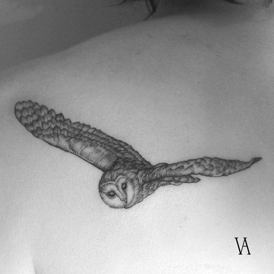 Little owl outline tattoo - photo#47