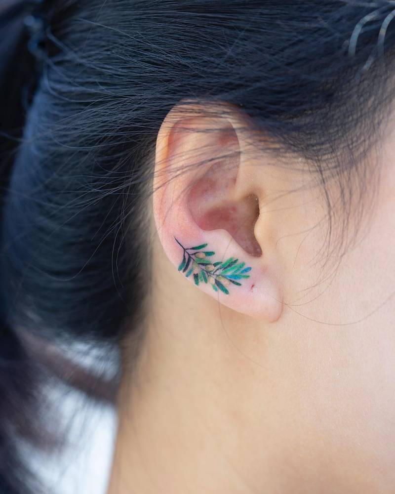 Olive branch tattoo on the ear.
